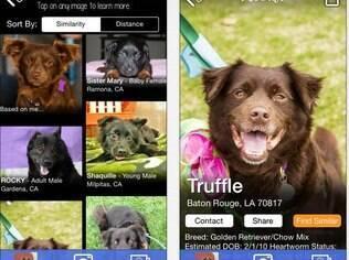 Apenas para iPhone, PetMatch localiza cães e gatos parecidos com as fotos inseridas pelo usuário. Funciona apenas nos EUA e é grátis