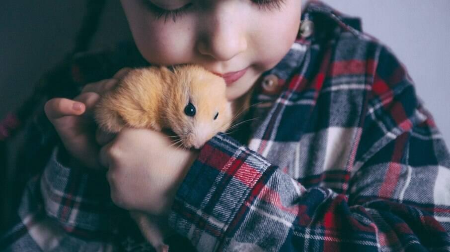 Deve existir uma interação entre o hamster e sua família