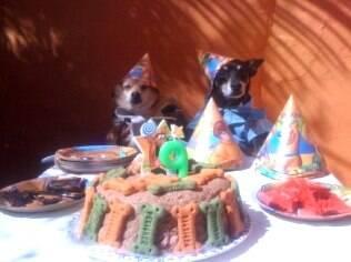 Renata Ferraz faz festa de aniversário para Luigi e Nina: tudo natural