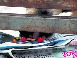 Cães foram alimentados por vizinhos por brecha aberta em portão