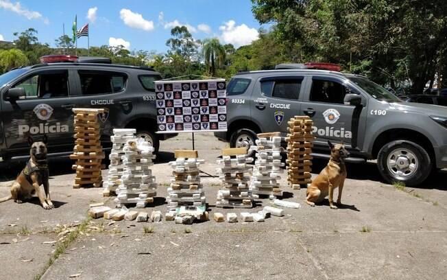 Canil da PM é responsável por grandes apreensões de drogas em todo o Estado de São Paulo