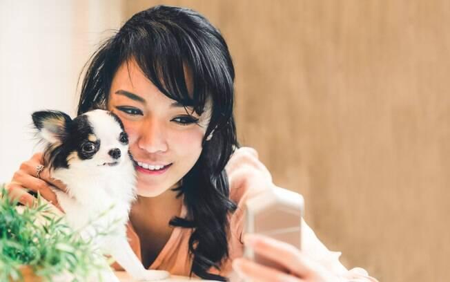 Se você tem um smartphone ou tablet com acesso à internet, baixar esses aplicativos para cães pode te ajudar no dia a dia