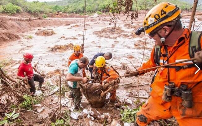 Ainda há 13 moradores de Bento Rodrigues e 11 funcionários da Semarco desaparecidos