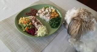 A PetNut tem como objetivo melhorar a qualidade de vida dos animais por meio da alimentação natural. Com a ajuda de veterinários nutrólogos, a empresa produz refeições de qualidade, saudáveis e nutritivas para os pets. Na coluna os especialistas da PetNut falam um pouco mais sobre a importância da alimentação natural para bichinhos.
