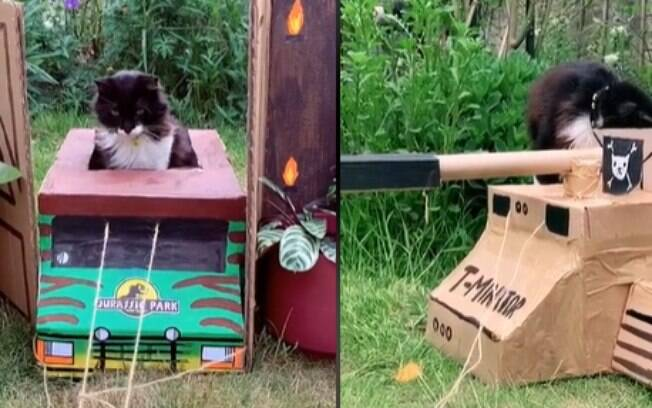 Carros de papelão que Jen fez para seu gato
