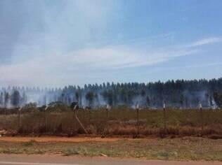 Incêndio no aeroporto de Capelinha queimou cerca de 1,8 hectare de vegetação.