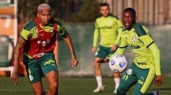 Palmeiras tenta manter a liderança contra o Fluminense neste sábado