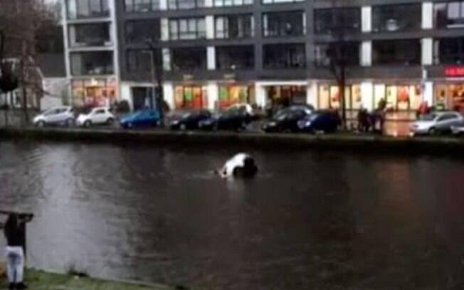 Vídeo mostra resgate de mãe e bebê de canal gélido em Amsterdã, na Holanda