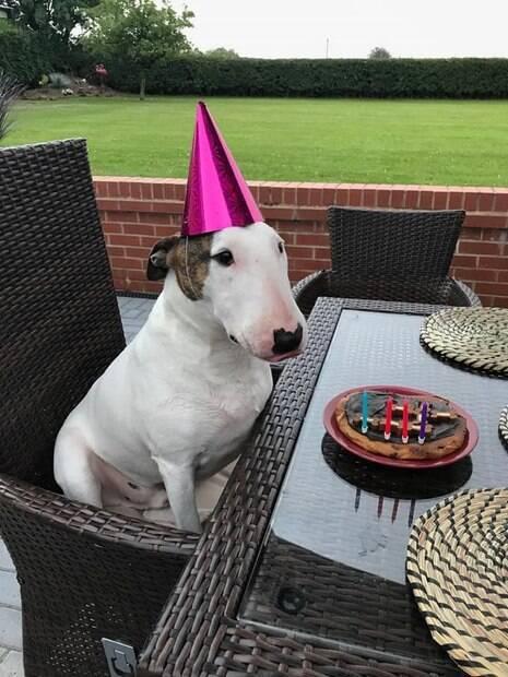 Aniversário de quatro anos de Floyd