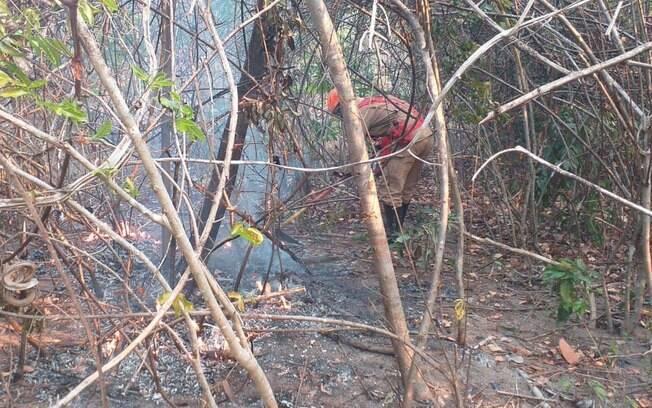 Fogo consumiu mais de 75 mil hectares de mata na região