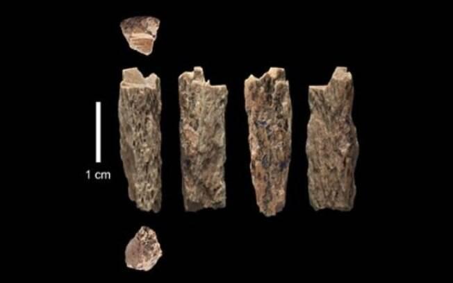 A descoberta foi feita após análises do fragmento de um osso, que eram da filha de um neandertal e um denisovano