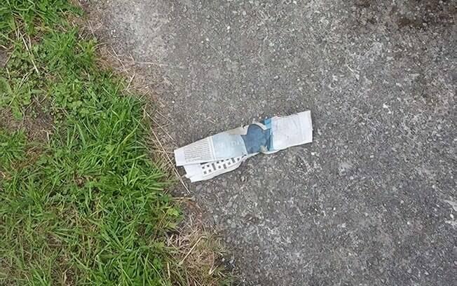 Jornal roubado por gato doméstico na porta da casa de sua dona
