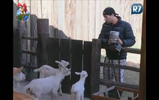 Mais calmo, Thiago conversa com as cabras e pede que elas o ajudem na tarefa