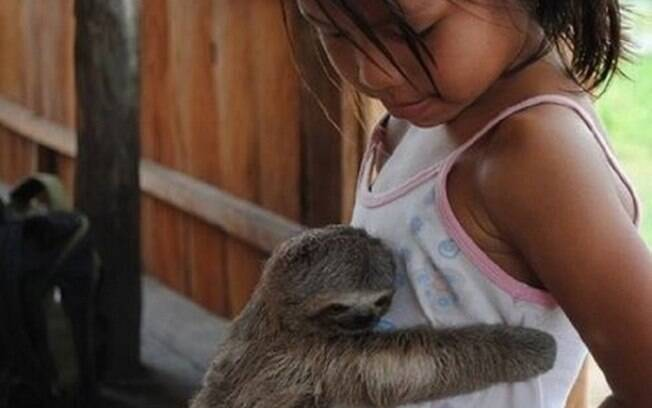 Um bicho preguiça deboas na barriga de uma menininha.