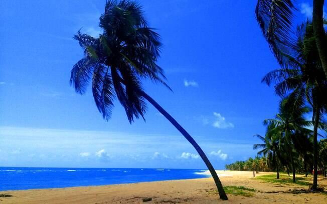 Quer opções de o que fazer em Alagoas? São Miguel dos Milagres é uma sugestão paradisíaca para a sua lista