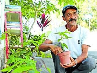 Amor. Orgulhoso do trabalho desenvolvido, o aposentado José mostra algumas de suas plantações