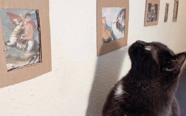 Um casal criou uma galeria de arte para seu gato durante o período de isolamento