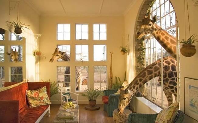 Hóspedes do Giraffe Manor, em Nairobi, têm experiência singular com girafas