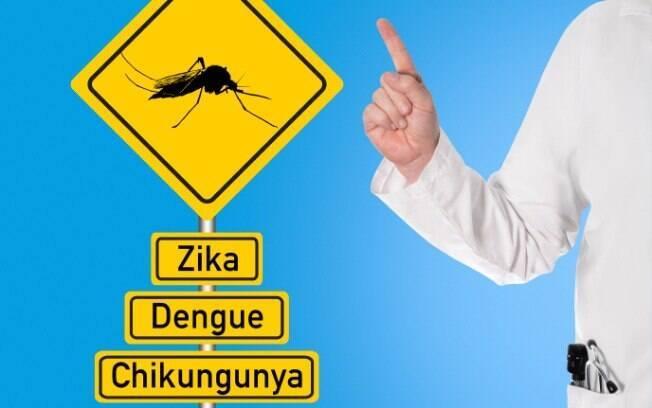 Causadas pelo mosquito Aedes aegypti, as doenças zika vírus, febre chikungunya e dengue têm diferenças importantes nas suas gravidades . Foto: iStock