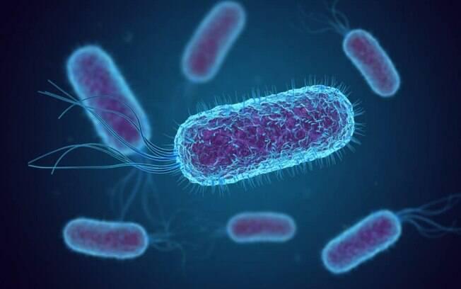 Novo antibiótico contra 'superbactérias' entra em ensaios clínicos