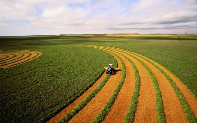 BTG Pactual (BPAC11) investe R$ 950 milhões no agronegócio, apostando no crescimento do setor