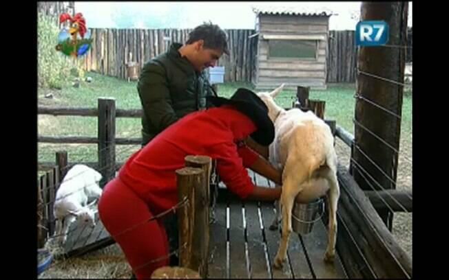 Thiago observa Valesca ordenhando cabra na manhã desta quinta-feira (04)