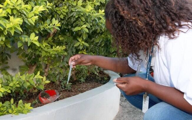 Campinas intensifica ações de combate à dengue no Vila Olímpia