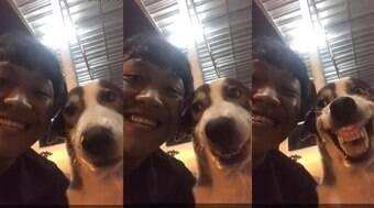 Cão imita sorriso de rapaz, mas se irrita e acaba mordendo-o