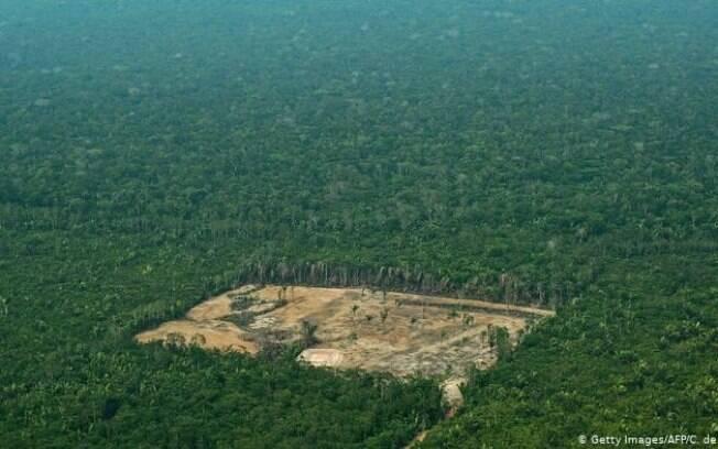 Com alta de 9% desmatamento da Amazônia atinge maior valor desde 2008