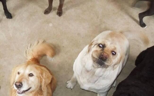 Quando você sai linda mas sua amiga estraga a foto