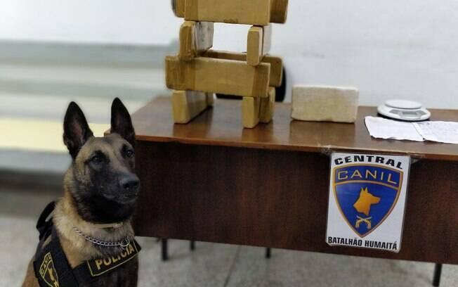 Canil da PM encontra 9kg de drogas em Barueri