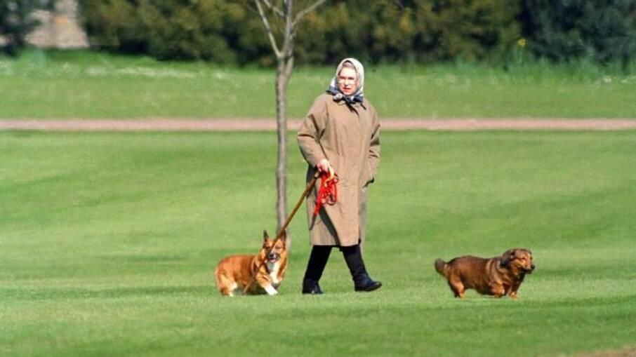 Rainha Elizabeth II passeando com seus cachorros, em 1994