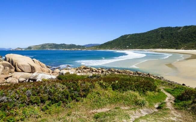 Vista da Praia da Galheta em Florianópolis, Santa Catarina