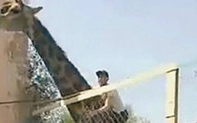 Homem subiu em uma girafa em um zoológico do Cazaquistão