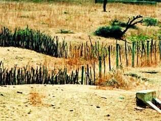 Dinheiro é destinado a pequenos agricultores do semiárido