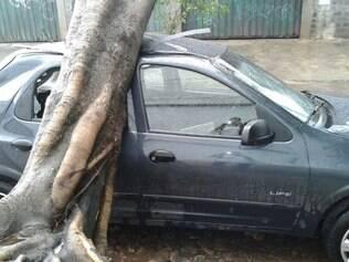 Carro estaciona em rua do Santa Branca tem vidros quebrados por queda de árvore