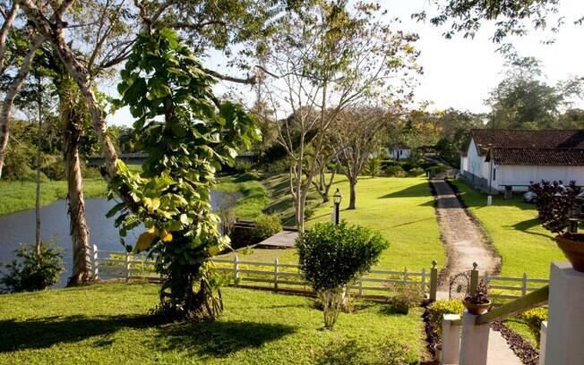 Fazendas onde cacau é plantado abrem as portas aos turistas