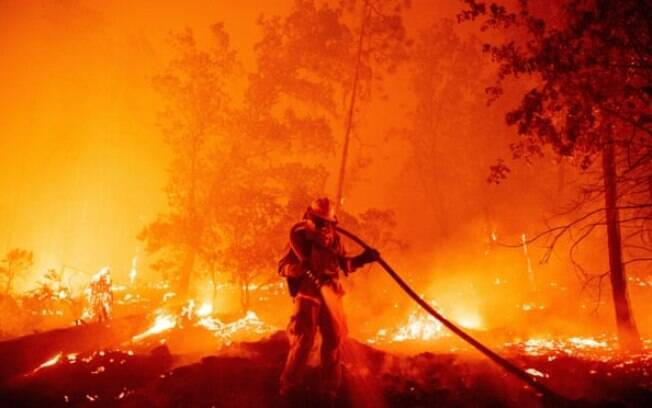 Um bombeiro apaga as chamas em Madera County, Califórnia, em setembro