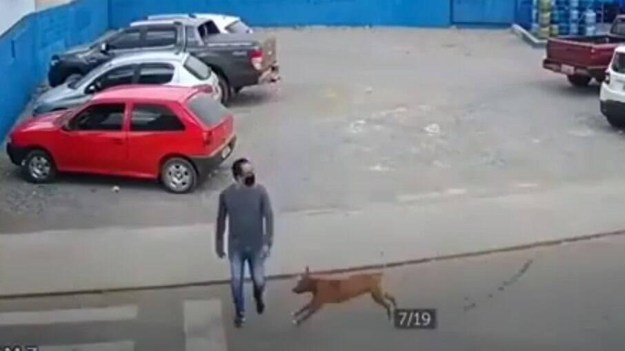 Homem é atropelado por cachorro em estacionamento