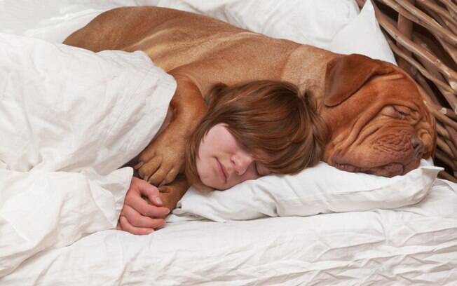 O cachorro que dorme na cama dos donos precisa ser muito bem educado para não ter problemas comportamentais