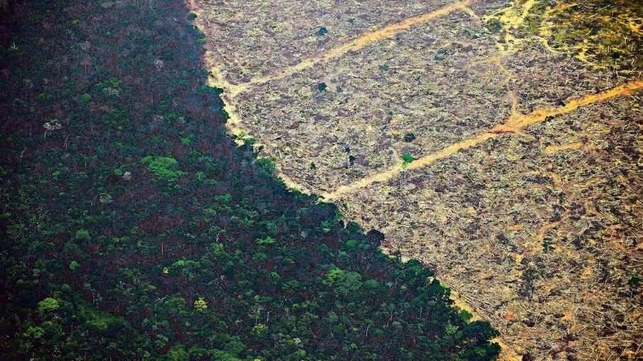 Região atingida por queimadas em Rondônia