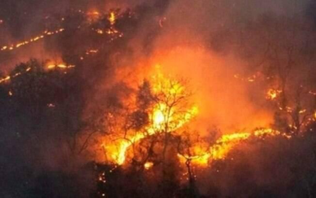 Incêndios no Pantanal registram o pior mês de julho da história.