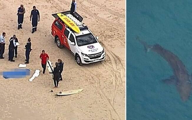 Tubarão é flagrado em praia nos Estados Unidos