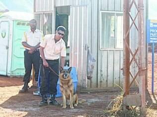 Quando a reportagem chegou acompanhada de Zilda Santana, o segurança tirou o cachorro e o manteve o tempo todo fora do canil