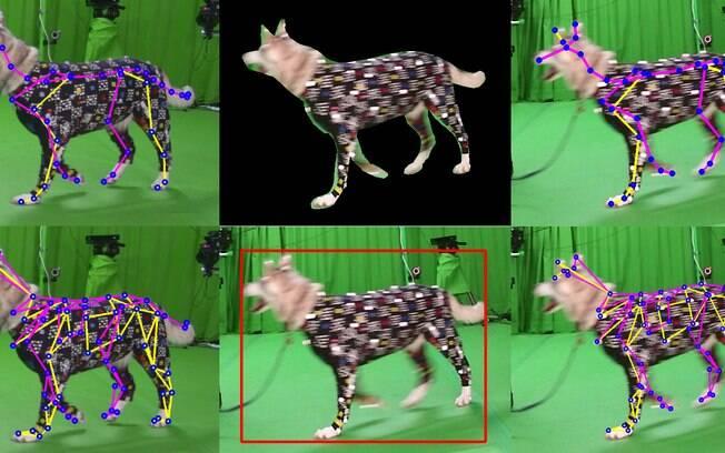 Roupa é usada para transformar movimentos do cachorro em animação