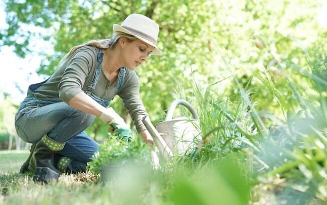 Nesta simpatia para perder a barriga, quem não atingir o objetivo total, ao menos terá um jardim bonito em casa
