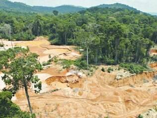 Natureza. A floresta Amazônica é cortada para dar lugar a uma mina de ouro ilegal, em imagem de 2009