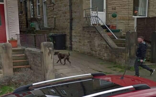 Imagem do Google Earth que mostra o cachorro