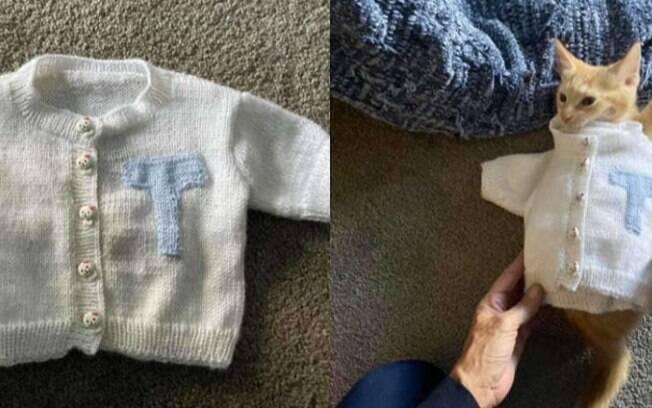 Idosa tricotou suéter muito fofo para o neto gato