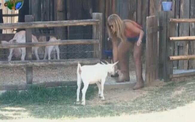 Raquel atrai a cabra de volta para casa com a ração